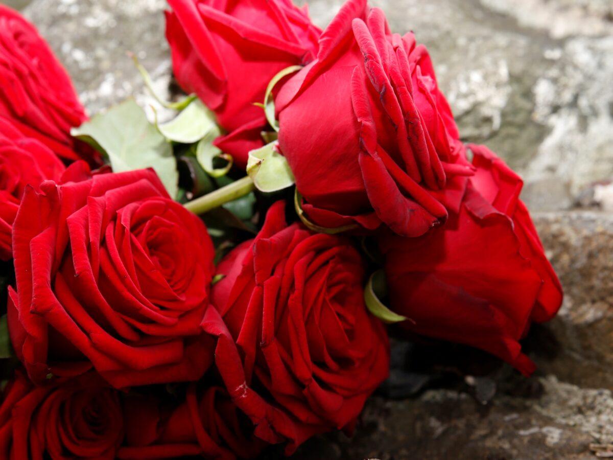 Liebe ist... - Happy Valentine's Day